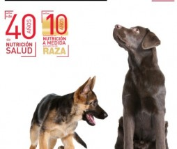 -royal-canin